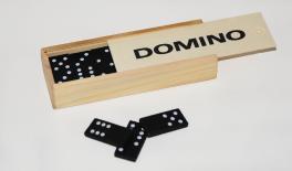 DOMINO 0519504