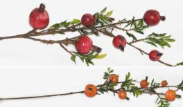 Six Fruit Pomegranate branch 0516120