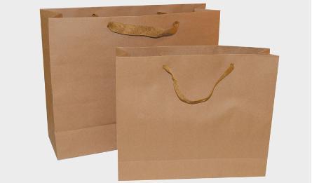 BAG WITH BELT 30X25CM 0402088