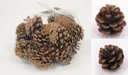 QF18A090 Natural dried pinecone 0.2kg 0513011