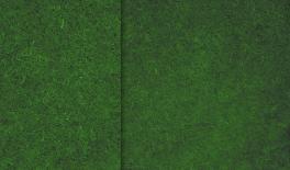 1x1m lawn 50pcs/ctn 0516028