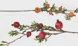 Large branches of pomegranate fruit 12pcs/box 15x80cm 0516060