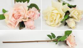 083225# rose flower 0516102