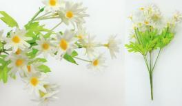 5 head hamomile flower 0516116