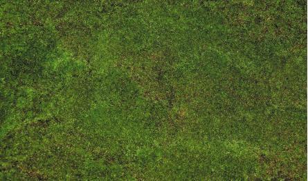 Flicker Lawn 1x2m 0520126